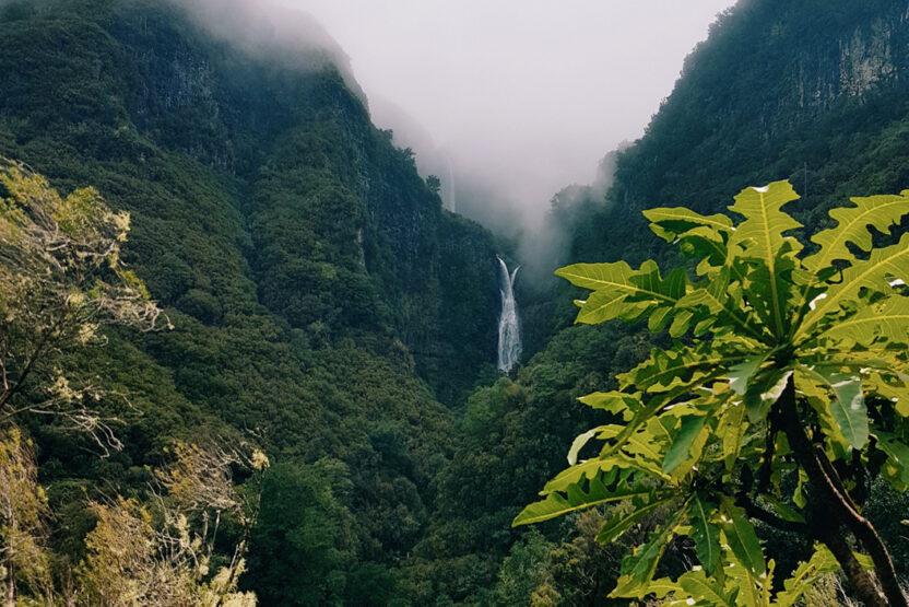 Naturschutzgebiet Rabaçal auf Madeira