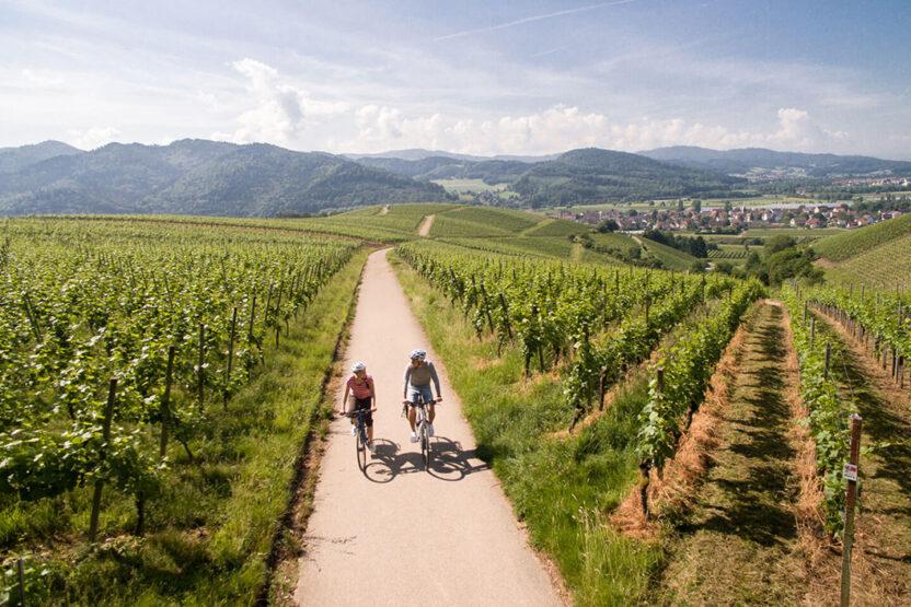 Der badische Weinradweg