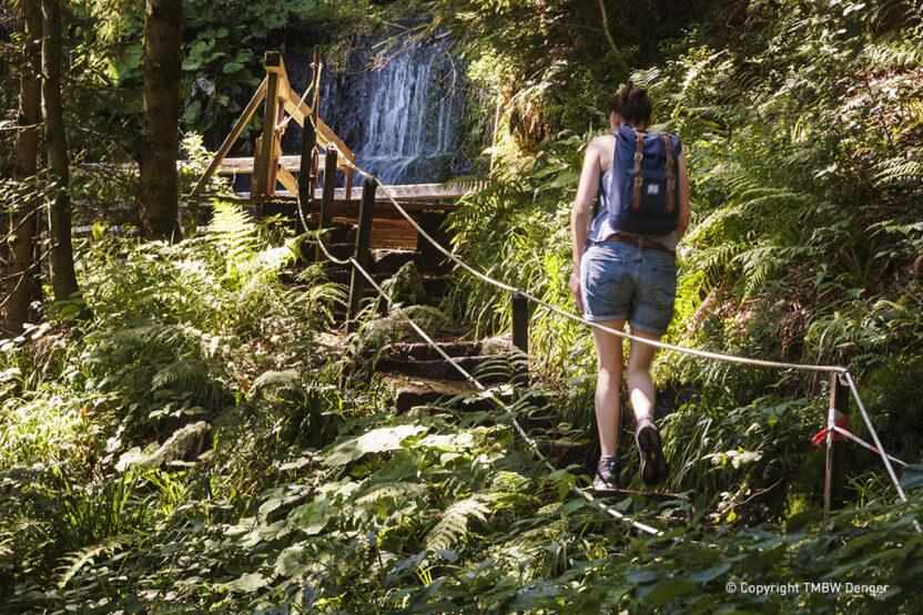 Schwarzwald-Trekking -Teil des Sankenbachwasserfalls auf der Etappe Kniebis nach Gutellbach