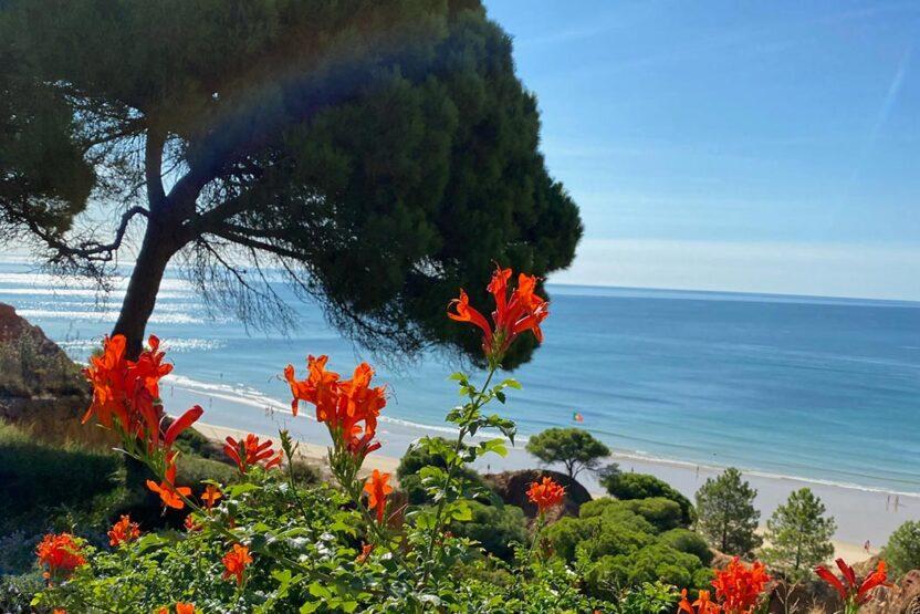 Urlaub an der Küste Portugals