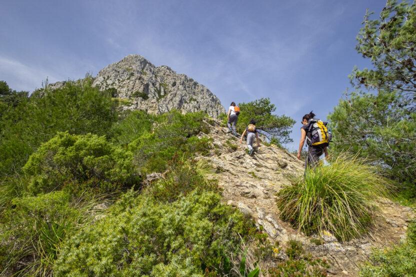 Auf dem Puig de Galatzó
